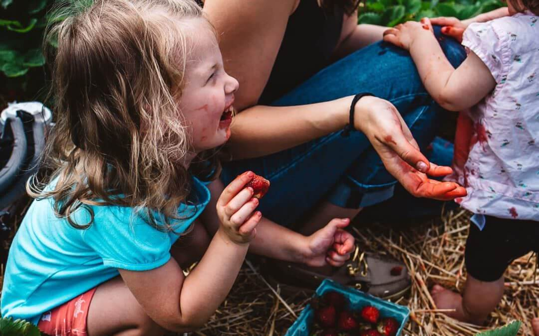 Girl laughing while picking strawberries with her family